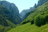 Cheile Turzii national park — Stock Photo