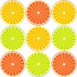 Citrus fruit background - vector — Stock Vector