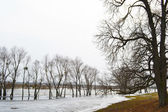 View of the river Kopanets — Stock Photo