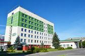 El edificio de la universidad estatal de polesia en pinsk — Foto de Stock