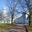Stock Photo: Smolny Cathedral on sunny spring day