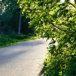 Rural asphalt road — Stock Photo