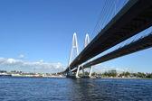 Kabel-stagade bridge i sankt petersburg — Stockfoto