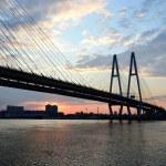在圣彼得堡的拂晓前电缆支撑桥 — 图库照片