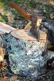 Ax fastnade — Stockfoto