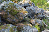 Stones in moss — Stock Photo