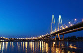 Cable stayed bridge at night — Stock Photo
