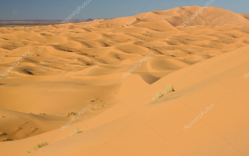Dunes of Sahara desert in Morocco — Stock Photo #10359142