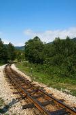 Sırbistan turistlere tarihi tren — Stok fotoğraf