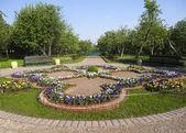 Aiuola nel parco kolomenskoe — Foto Stock