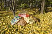 Autumn, umbrellas — Stock Photo