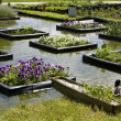 Flowerbeds on water — Stock Photo