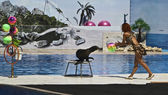 Leone marino e formatore — Foto Stock