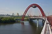 Moscow, Pictorial bridge — Stock Photo