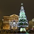 Moscow, Russia - December 15, 2011: Christmas tree — Stock Photo