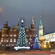 Moscow, Christmas trees - Stock Photo