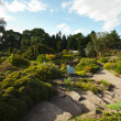 Stock Photo: Botanic Garden