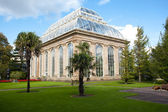 Greenhouse in Royal Botanic Garden, Edinburgh — Stockfoto