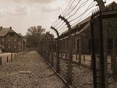 Auschwitz-birkenau toplama kampı — Stok fotoğraf