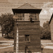 Watchtower in Auschwitz and Electrified Fence — Foto Stock
