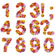 Numbers of flowers — Stock Photo