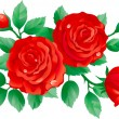 Red roses — Stock Vector #8500363