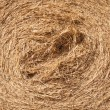 Close up of hay bale — Stock Photo #10393743