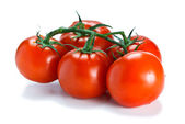 Fresh vine ripened tomatoes — Stock Photo