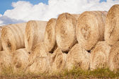 Stack of hay bales drying outdoors — Stock Photo