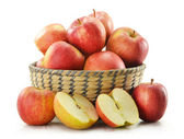 Composition with apples in basket isolated on white — Stock Photo