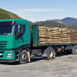 Stock Photo: Truck transporting logs