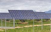 Centrale solare — Foto Stock