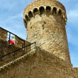 Stock Photo: Tower Tossde Mar, Spain