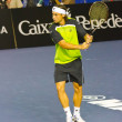 David Ferrer - Stock Photo