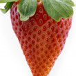 Single fresh red strawberry - Foto de Stock