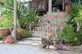 Garden at home — Stock Photo