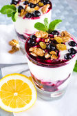 Cream dessert with black currants and nuts — Stock Photo