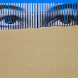 Eyes on the dune — Stock Photo