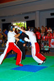 3 Dünya kickboks Şampiyonası 2011 — Stok fotoğraf