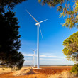 Windmills — Stock Photo #10043534