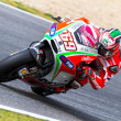 Nicky Hayden pilot of MotoGP - Foto de Stock