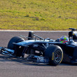 Team Williams F1, Pastor Maldonado, 2011 - Photo