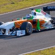 Постер, плакат: Team Force India F1 Adrian Sutil 2011