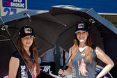 Pitbabes of a team Hype of 125cc of the CEV — Stockfoto
