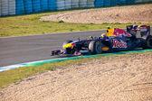 Team Red Bull Racing F1, Mark Webber, 2011 — Stock Photo