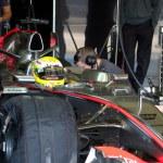 ������, ������: Team McLaren F1 Lewis Hamilton 2006
