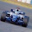 Team Williams F1, Alex Wurz, 2006 - Zdjęcie stockowe
