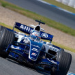 Team Williams F1, Narain Karthikeyan, 2006 — Stockfoto