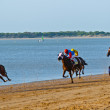 Horse race on Sanlucar of Barrameda, Spain, August  2011 — Lizenzfreies Foto