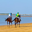 Horse race on Sanlucar of Barrameda, Spain, August  2011 — Stok fotoğraf